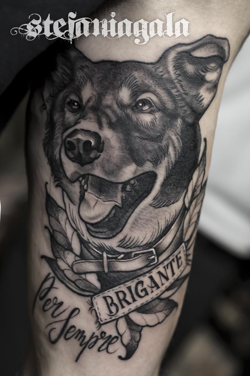 Cane_Lupo_ritratto_portrait_Color_natura_disegni_personalizzati_neo_new_traditional_Stefania_Gala_Evil_Machines_Tattoo_Roma_migliore_tatuatore