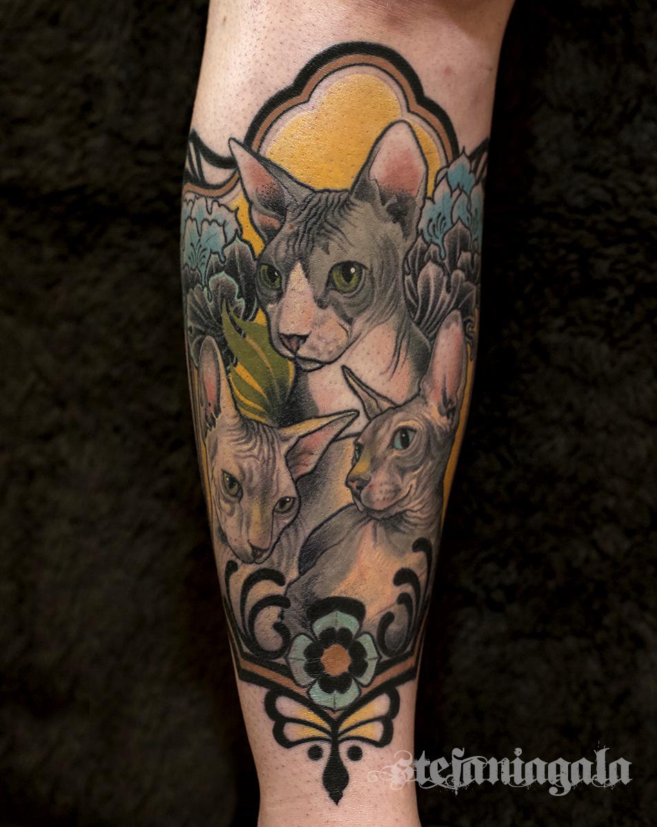 Gatti_sphinks_neo_traditional_new_roma_italia_colori_disegni_personalizzati_Stefania_Gala_evil_machines_tattoo_migliore_tatuatore__Roma